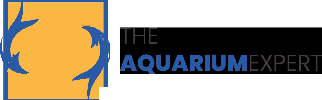 The Aquarium Expert